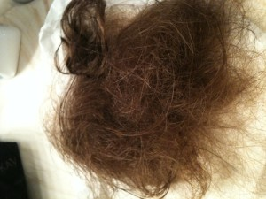 33930_070111_Hair_fell_out_display